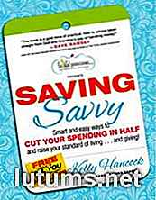 """Saving Savvy"" par Kelly Hancock - Critique de livre"