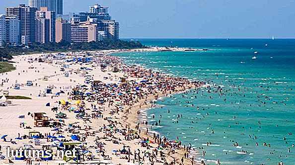 velocità di incontri a Miami FL